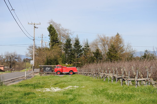 Hook & Ladder Vineyards