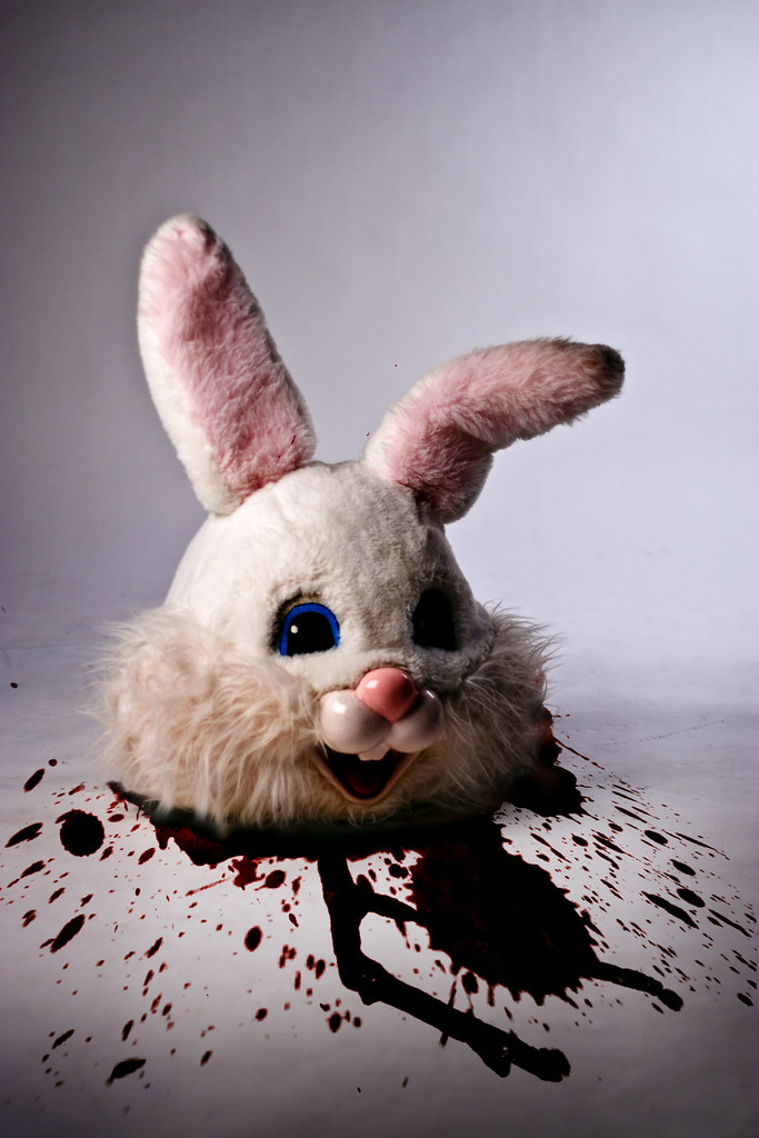 The Worlds Most Recently Posted Photos Of Bloody And Rabbit