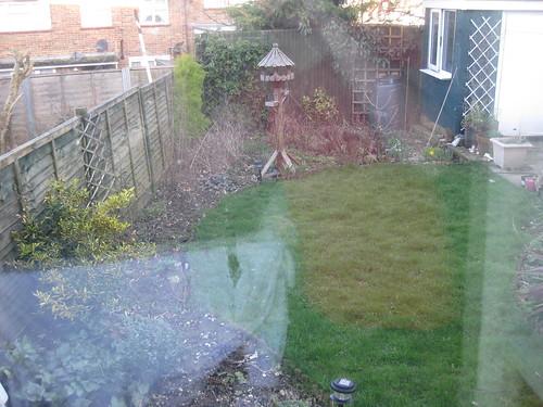 Lower lawn 01/04/2010