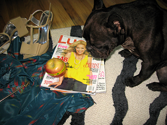 frenchi+apple+lucky mag+dress