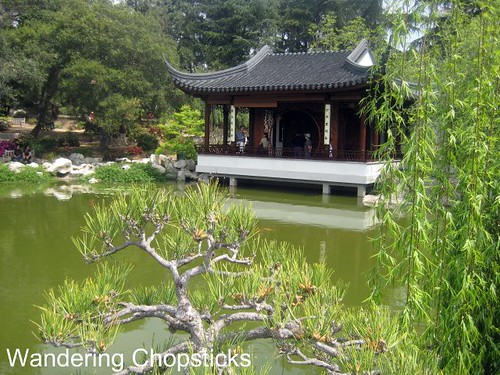 The Huntington Library, Art Collections, and Botanical Gardens (Chinese Garden) (Spring) - San Marino 7