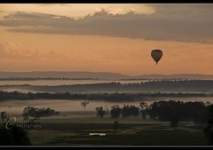 Above the Mist ~ Hunter Valley, Australia (Hasselbach Photography) Tags: autumn sky urban cloud mist green industry tourism nature beauty field grass leaves fruit rural truck sunrise season landscape countryside vineyard spring scenery colorful flickr estate natural wine outdoor farm country border balloon harvest scenic vine australia scene fresh trellis winery valley crop nsw hotairballoon hunter produce growing organic agriculture non grapevine wineyard huntervalley winemaking cultivated d80 viniculture 1802000mmf3556