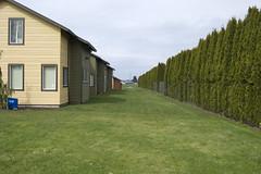 Site edge (rbubbs16) Tags: publicspace habitat connections woodburn urbancontext exteriorspace rachelssitephotos