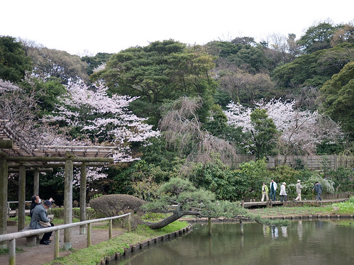 Sankei-en, Yokohama in early April