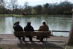 Watching the pond (johanfoster) Tags: germany deutschland europe karlsruhe federalrepublicofgermany bundeslandbadenwrttemberg stadtgetty2010
