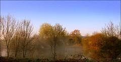 MIST RISING 2 (Norfolkboy1) Tags: england mist sunrise dawn pond buckinghamshire bledlow hollygreen