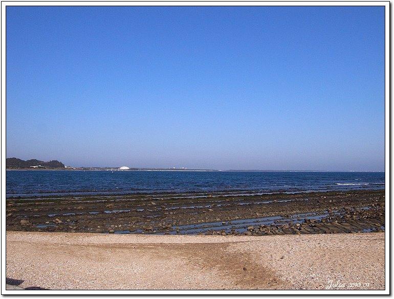 青島海岸 (13)