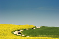 S (fotomassimo) Tags: landscape marche italia italy strada road colori spring primavera giallo verde green yellow nikon d700 blue sky paesaggio marchigiano macerata erba grass fiori flowers peace peaceful azzurro colza esse s composizione campi campo copertina stupenda bella fresca campagna wonderful wallpaper sfondo automobile auto autovettura soft lieve pendio dolce profumo car semplice semplicit caldo sole summer estate vacanze holiday holidays ferie felicit awesome cyan celeste fine senza confini confine orizzonte horizon rurale best