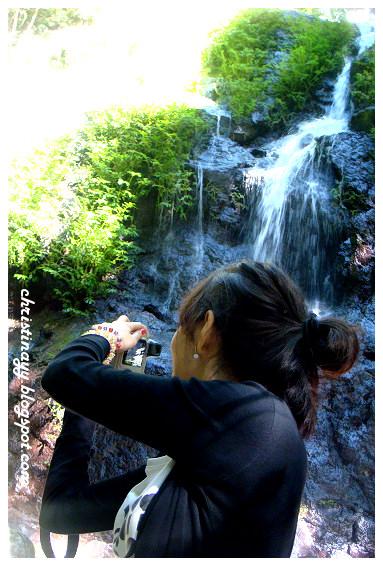 Main Range National Park: Cascade Falls + Jungle Trekking