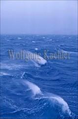 20008458 (wolfgangkaehler) Tags: ocean blue sea seascape water waves wave antarctica rough waterscape roughsea roughseas roughocean oceanscape
