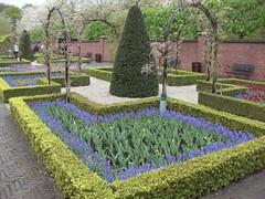 Keukenhof Gardens (apaulgoldblum) Tags: keukenhofgardens nearamsterdam ntnotjusttulips