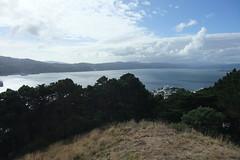 NZ 062