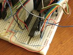 Static RAM (wu.e) Tags: macro computer pc ibm electronics microcomputer 8088