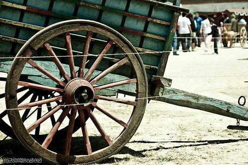 Día del Campo 2010 en Moraleja de Enmedio