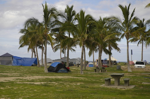 oahu-homeless-tents