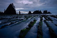 Point of the Arches, Olympic National Park (Tyler Westcott) Tags: sunset reflection coast washington nps may olympicpeninsula pacificocean olympicnationalpark 2010 seastack shishibeach pointofthearches nikond90
