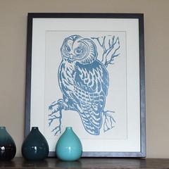 blue owl frame