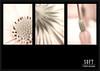 S O F T (Per Erik Sviland) Tags: macro photoshop nikon soft framed micro erik relaxed per lightroom d300 pererik cs5 sviland sqbbe pereriksviland