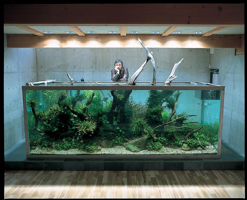 Óriás Akvárium