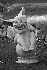 Shoulder to cry on (antaean) Tags: bw white black statue angel garden wings sony wing ornament angels cherub alpha cherubs a100
