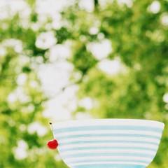 A bowl full of Summer (provincijalka) Tags: blue red white tree green leaves june vintage square cherry one backyard waiting please bokeh vibrant bowl already collection single round screaming striped pyrex 2010 hangingon milkglass forsummer provincijalka abowlfullofsummer