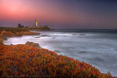 Twilight at Pigeon Point (Don Smith Photography) Tags: peaceful calm serene tranquil beautyinnature