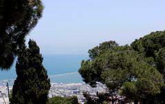 Blick auf Haifa