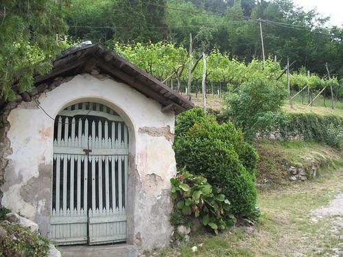 Kapelle am Wegesrand inmitten von Weingütern