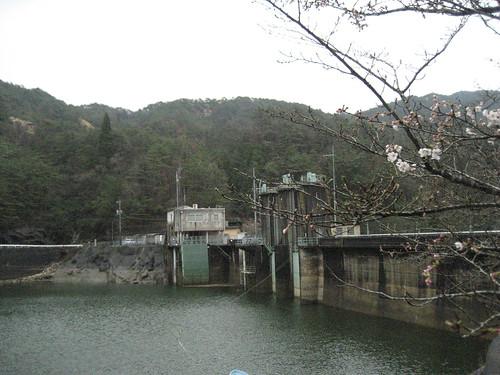 渡之瀬ダム、ドライブや釣りで人気の隠れスポット!