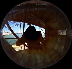 Self portait (on a eye) (Lambros Kazan) Tags: macro reflection eye thessaloniki salonica