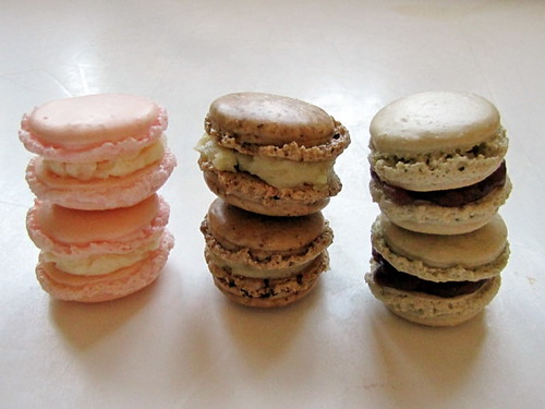A Trio of Macarons