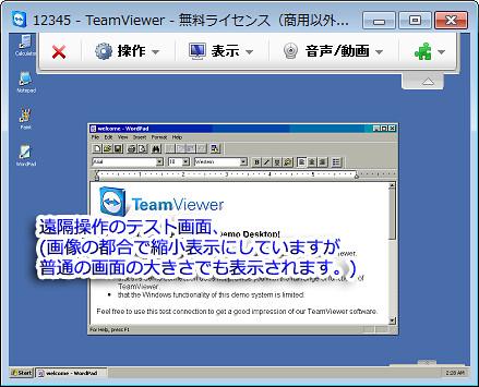 TeamViewer06
