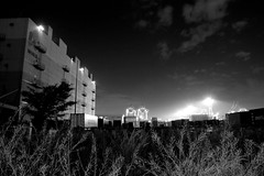 Warehouse and Weed (Ayanami_No03) Tags: monochrome japan tokyo blackwhite weed scenery warehouse 東京 picnik モノクロ 雑草 倉庫 eoskissx4 eos550d