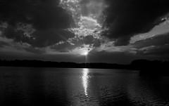 star (bdaryle) Tags: sunset bw brandondaryle bdaryle imagesbybrandon