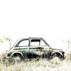 fiat 500 (archifra -francesco de vincenzi-) Tags: italy car fiat500 microcar molise isernia fiatlux fiat500l imageexpression archifraisernia francescodevincenzi