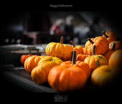 Happy Halloween! [Explore Front Page!] (farbspiel) Tags: red orange colour rot halloween colors yellow photoshop germany pumpkin deutschland photography colorful colours explore gelb handheld colourful frontpage deu watermark fa