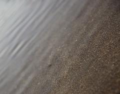 Widemouth Bay (Matt.Cas) Tags: widemouthbay northdevon beachphotography rocks nature naturalworld landscape beaches wildlife sealife ocean water sand sunlight reflections sky sea cliffs stone clouds