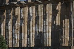 Colonne (TMtheSign) Tags: italy nikon italia d70s sicily sicilia agrigento greco selinunte tempio greektemple tempiogreco