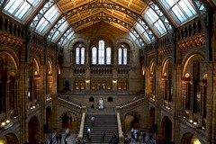 Natural History Main Hall