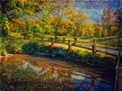 "Harmony in autumn (Bessula) Tags: autumn fall texture nature reflextion coth mywinners bessula tatot bestcapturesaoi magicunicornverybest selectbestexcellence sbfmasterpiece ""flickraward5"""