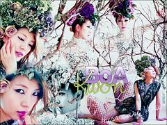 BoA Kwon - Hurricane Venus (itsbetterrun - júlia fauth) Tags: boa kwon