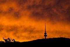 Sunset 16-11-2010 (Paul Hagon) Tags: sunset day cloudy australia canberra blackmountain telstratower australiancapitalterritory