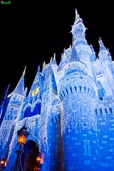 On the 12th Day of Christmas... (Tom.Bricker) Tags: disney disneyworld mickeymouse waltdisneyworld magickingdom waltdisney cinderellacastle disneyphotos wdwfigment tombricker