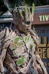 Groot in Disney California Adventure (GMLSKIS) Tags: disney california groot dca disneycaliforniaadventure nikond750