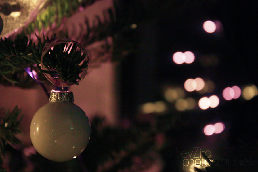 Noël 2009 #10