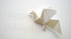 White Dove (Oriholic Jared) Tags: christmas origami holidays dove whitedove jaredneedle