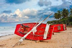 Jangadas de Bacopari (Fábio Pinheiro) Tags: praia brasil canon barco formosa 28135 bf rn riograndedonorte jangada baia 40d bacopari