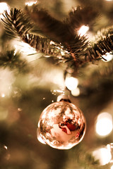 54:365 - Christmas Eve (Caleb Kerr) Tags: christmas distortion selfportrait reflection tree me pinetree ball mirror dof convex christmastree depthoffield ornament sphere round reflective 365 christmasornament christmaseve pineneedle shallowdepthoffield christmasball shallowdof yip project365 54365