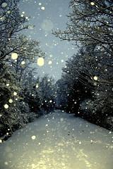 () Tags: snow cold scenic frosty fresh firstsnow snowfall isleofman ramsey mywalktowork