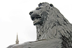 "Trafalgar Lion • <a style=""font-size:0.8em;"" href=""http://www.flickr.com/photos/45090765@N05/4255964111/"" target=""_blank"">View on Flickr</a>"